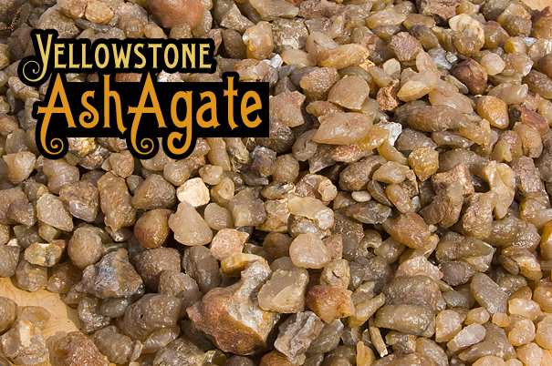 Yellowstone Ash Agates