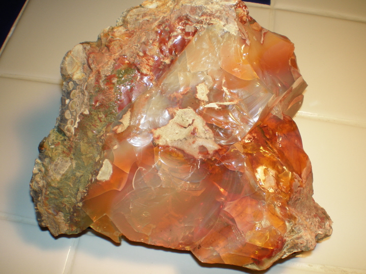 Tropical Opal from Oregon