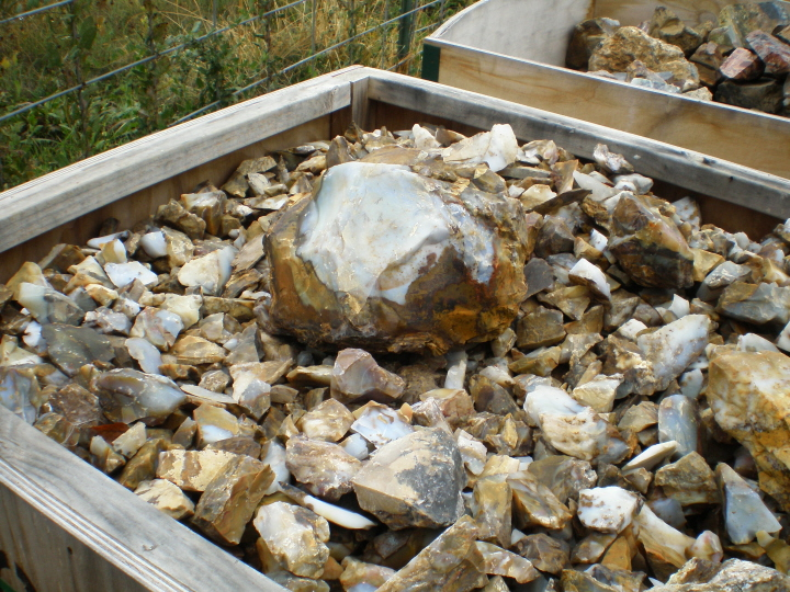 Ocean Agate from Oregon USA container loads available