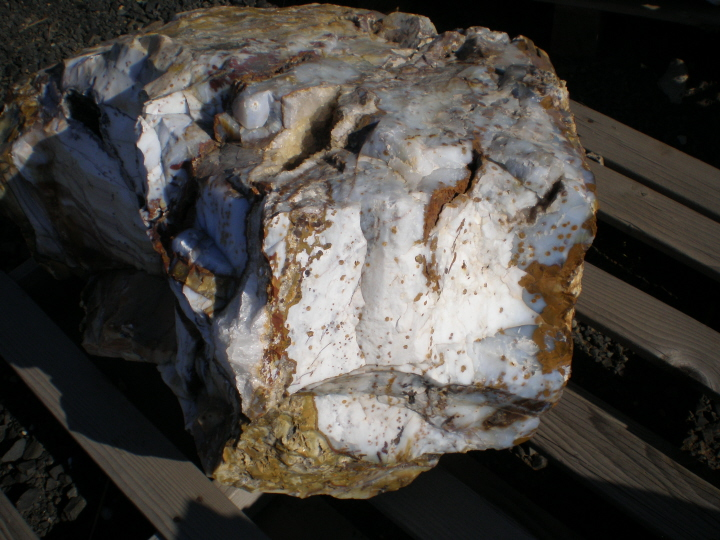 Ocean Agate Container Loads Available Oregon Usa Ocean
