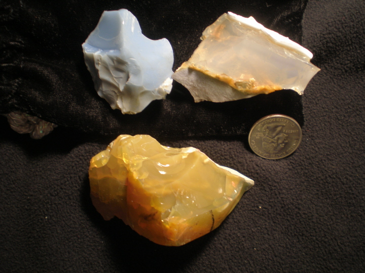 TropicalOpal from Oregon