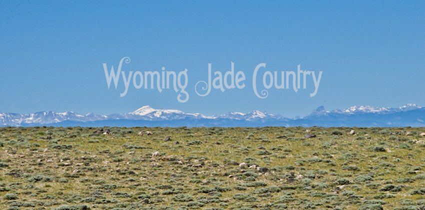 Wyoming Jade Country 1